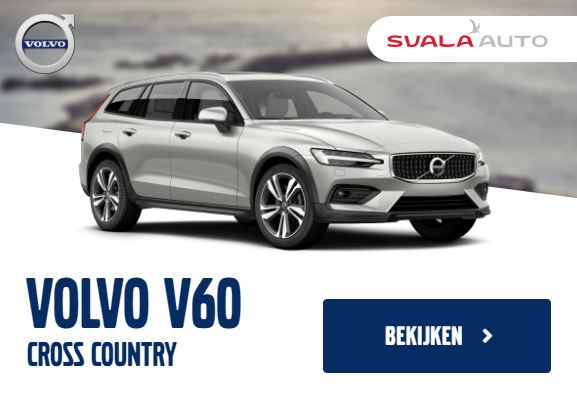 Display banner design voor Svala Auto